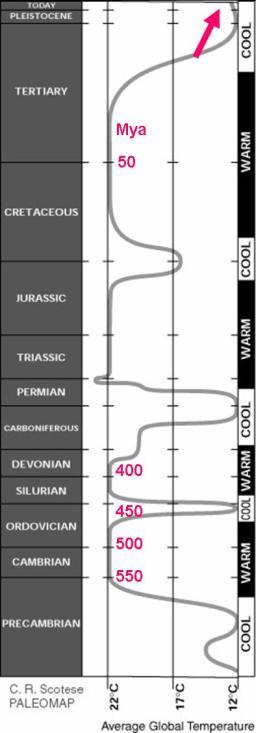 http://rovicky.files.wordpress.com/2007/12/paleoclimate-1.jpg