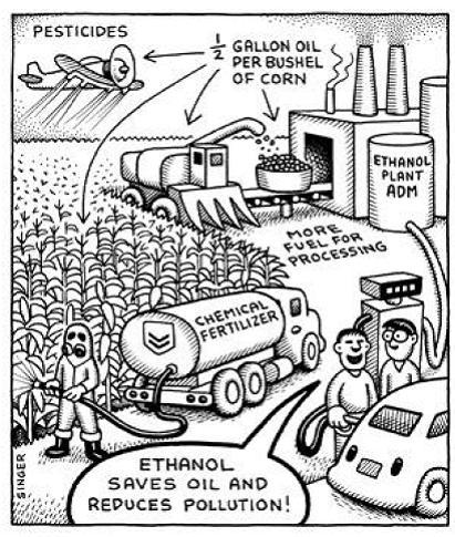 biofuel-bad_enviro.jpg
