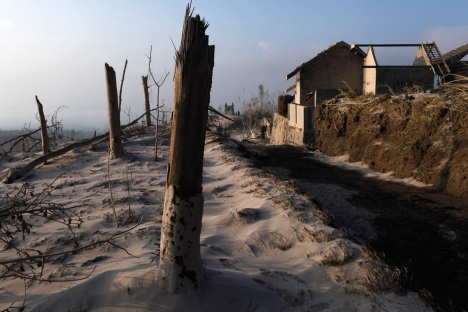 Burnt trees and ash cover the ground in the village of Kinarrejo in Sleman, near the ancient city of Yogyakarta, October 27, 2010. (REUTERS/Beawiharta) #