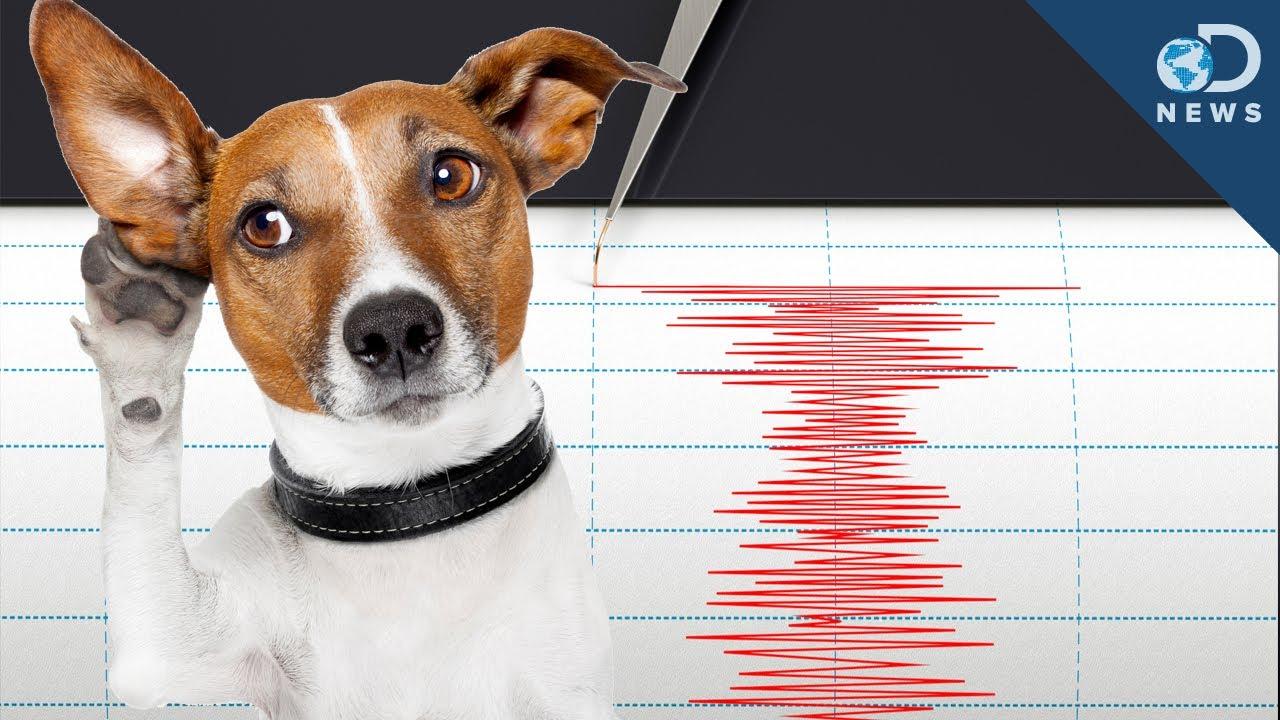Gempa Dongeng Geologi
