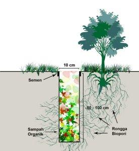 lubang-biopori