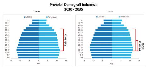DemografiIndonesia